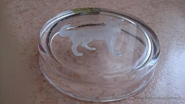 Antigüedades: Antiguo cenicero en cristal con grabado de pastor alemán y adorno en plata de ley repujada . - Foto 9 - 44763010