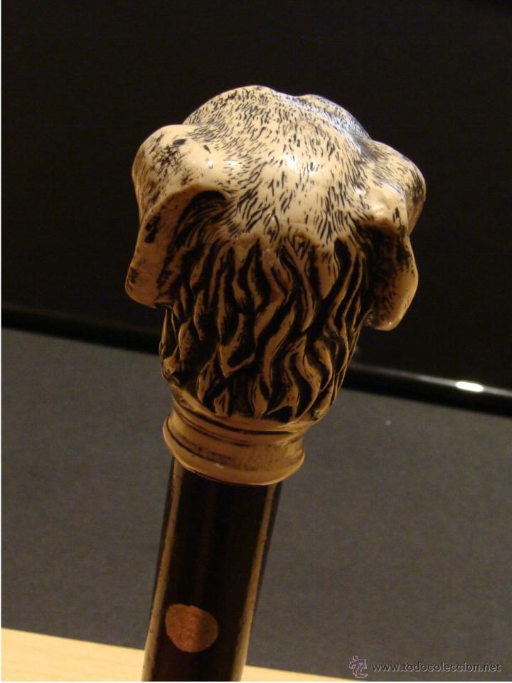 Antigüedades: EXCELENTE ANTIGUO BASTÓN DE COLECCIÓN CON EMPUÑADURA DE PERRO GALGO - Foto 8 - 114206202