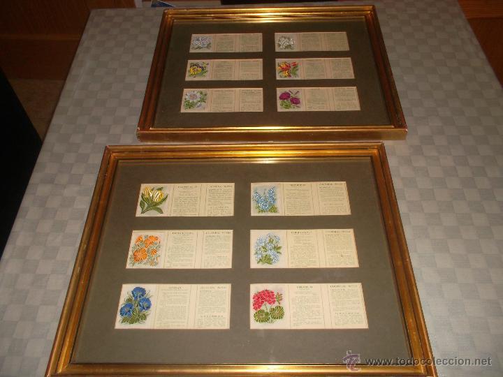 Antigüedades: precioso lote de bordados de planta hechos a mano - Foto 2 - 49263965