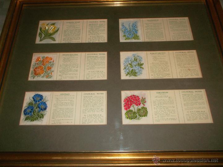 Antigüedades: precioso lote de bordados de planta hechos a mano - Foto 3 - 49263965
