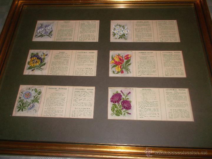 Antigüedades: precioso lote de bordados de planta hechos a mano - Foto 4 - 49263965