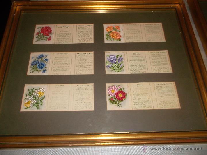 Antigüedades: precioso lote de bordados de planta hechos a mano - Foto 5 - 49263965