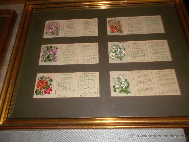 Antigüedades: precioso lote de bordados de planta hechos a mano - Foto 6 - 49263965