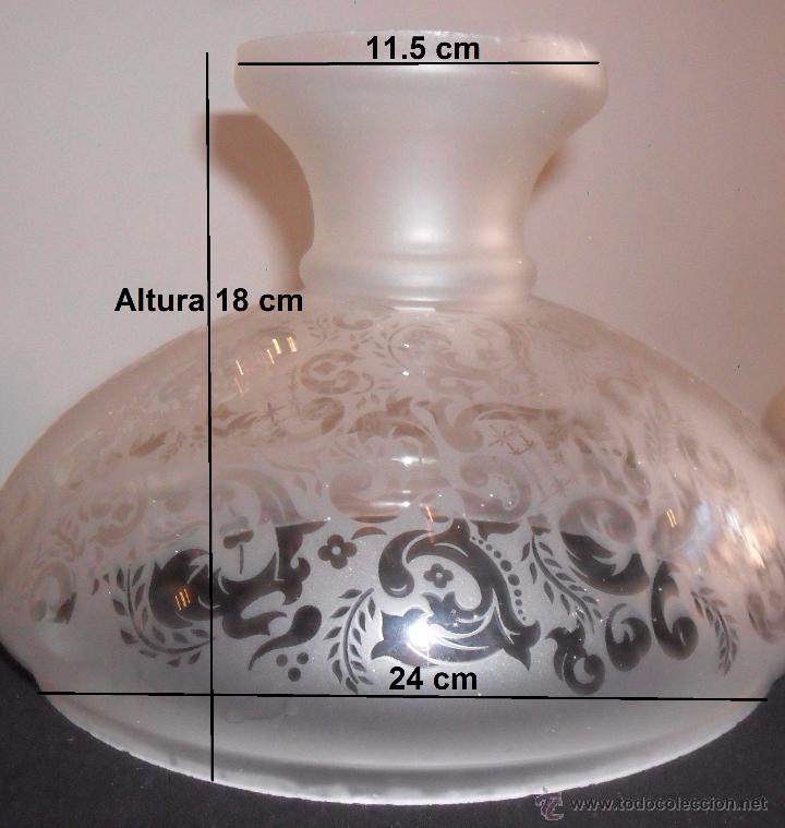 Antigüedades: Antigua tulipa - Foto 11 - 49896124