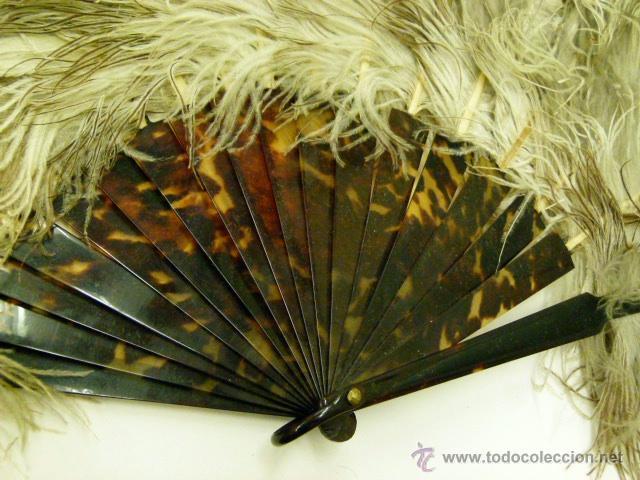 Antigüedades: Viejo Abanico de plumas de Marabu - Foto 3 - 50194999