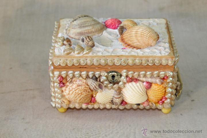 Caja Joyero Con Conchas De Mar Comprar Cajas Antiguas En - Fotos-de-conchas-de-mar