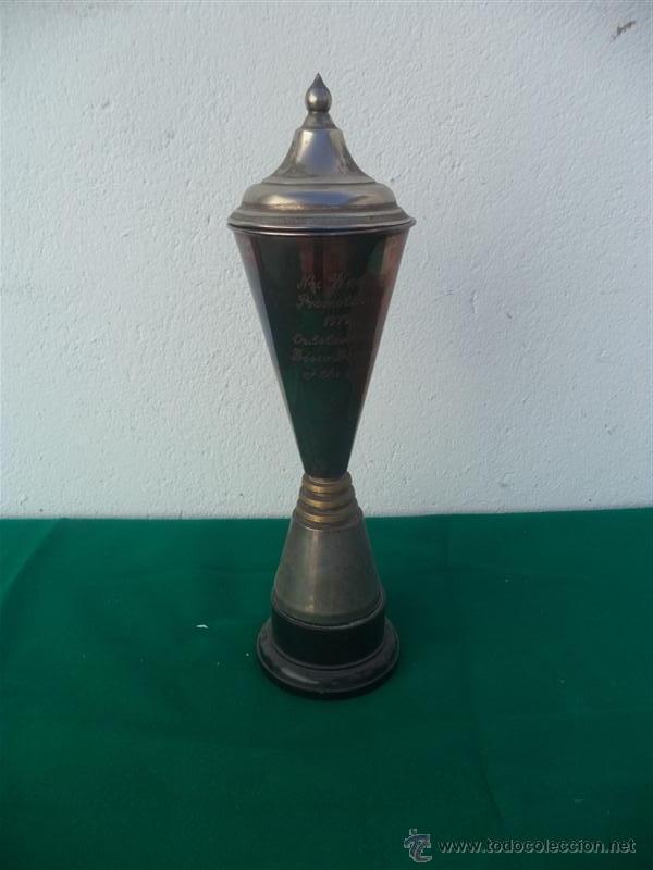 TROFEO ALPACA (Antigüedades - Hogar y Decoración - Trofeos de Caza Antiguos)