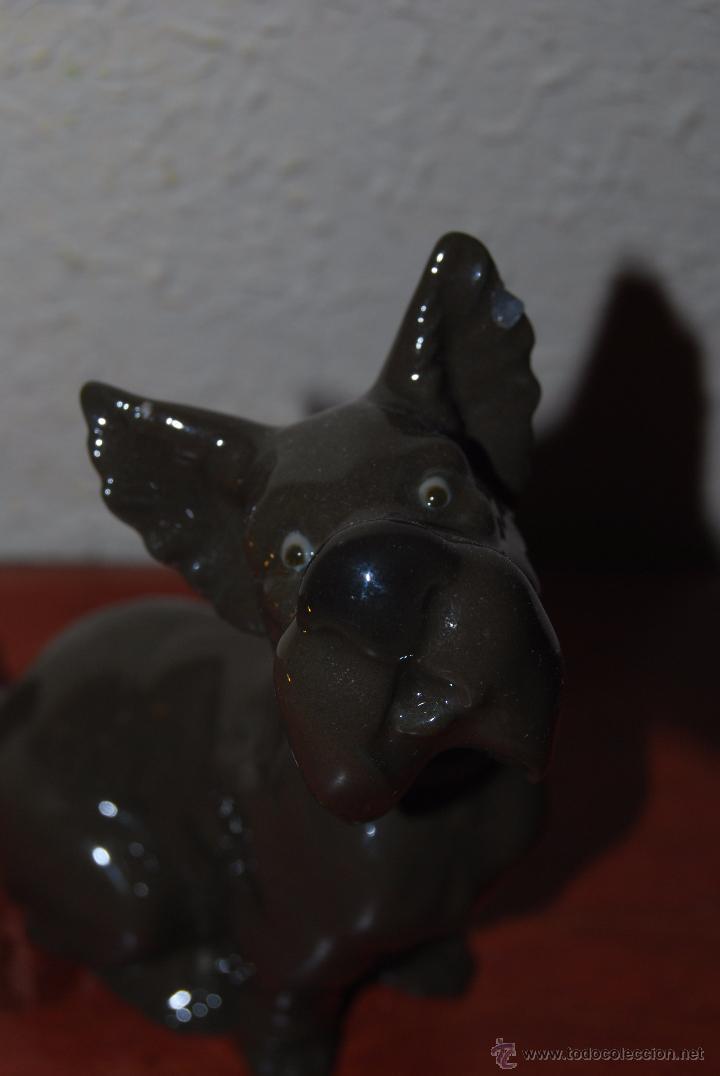 Antigüedades: PERRO DE PORCELANA NAO - LLADRÓ - Foto 6 - 52967973