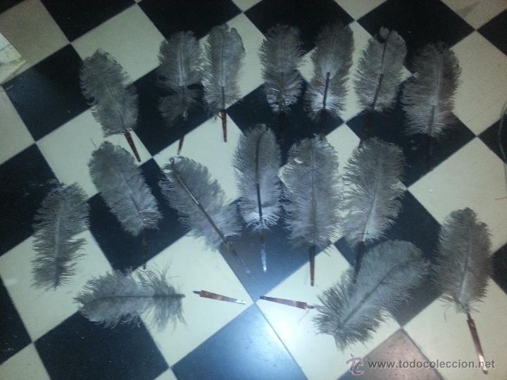 Antigüedades: plumas de marabu y carey , gran tamaño ,antiguas para restauracion abanico o pericon - leer - Foto 5 - 53034395