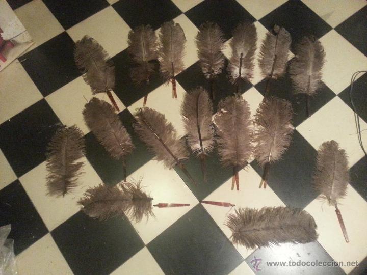 Antigüedades: plumas de marabu y carey , gran tamaño ,antiguas para restauracion abanico o pericon - leer - Foto 6 - 53034395