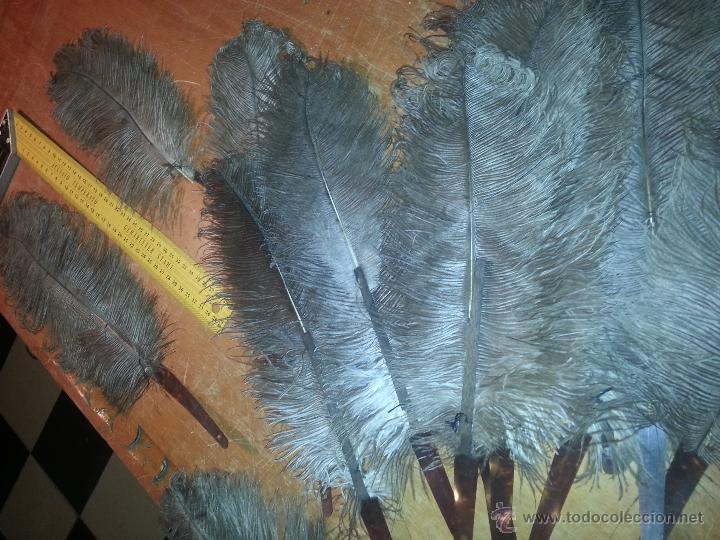 Antigüedades: plumas de marabu y carey , gran tamaño ,antiguas para restauracion abanico o pericon - leer - Foto 10 - 53034395