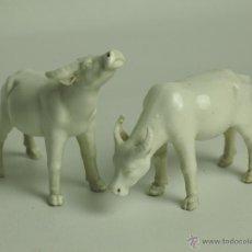 Antigüedades: PAREJA DE VACAS. PORCELANA. BLANC DE CHINE. CHINA. SIGLO XIX-XX.. Lote 47188802
