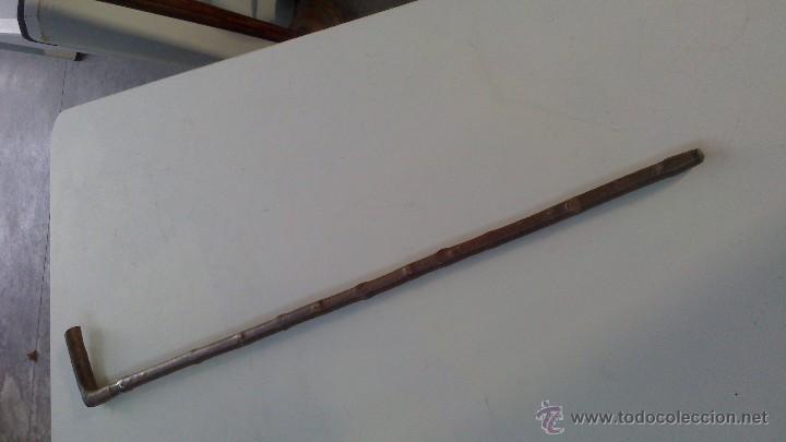Antigüedades: bastones ingleses , maderas nobles y diferentes remates - Foto 2 - 72153231