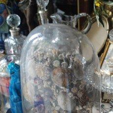 Antigüedades: PRECIOSO CENTRO ISABELINO DE FLORES Y CONCHAS CON FANAL DE CRISTAL. Lote 56260011
