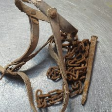 Antigüedades: ANTIGUA Y RARA JAQUIMA PARA CABRAS. Lote 57198510