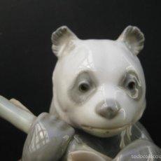 Antigüedades: MUY MUY DIFICIL FIGURA PORCELANA NAO BY LLADRO 1970 OSO PANDA COMIENDO BAMBU. Lote 57586229