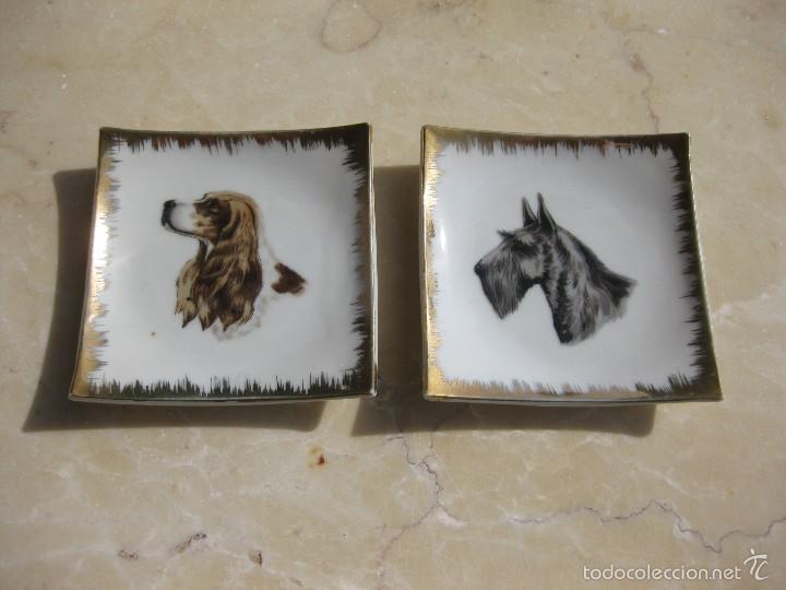 PLATO CON PERRO (Antigüedades - Porcelana y Cerámica - Francesa - Limoges)