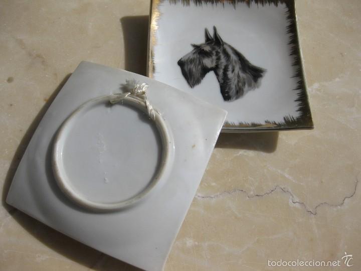 Antigüedades: plato con perro - Foto 2 - 58067369