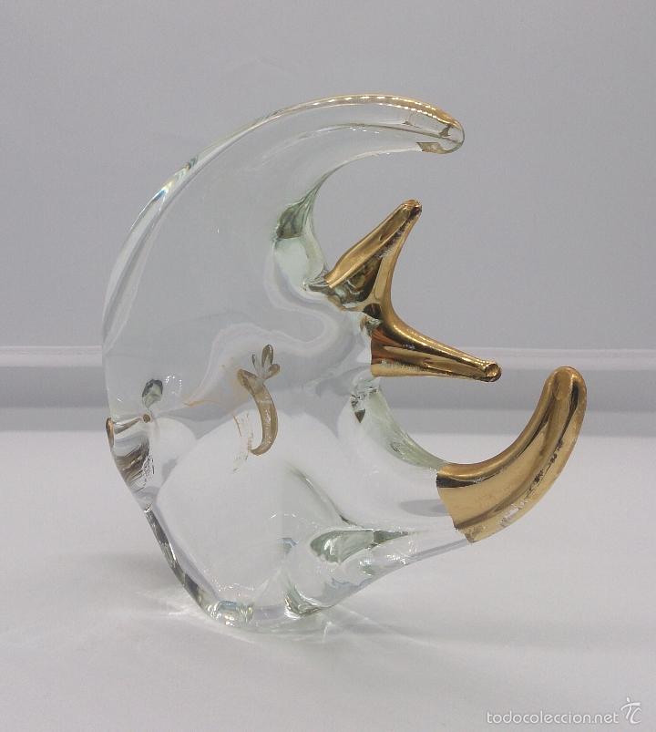 Antigüedades: Gran pez angel antiguo en cristal de murano Italiano autentico con baño parcial en oro de 18 k . - Foto 3 - 58339393