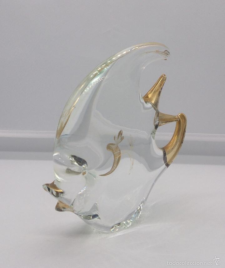 Antigüedades: Gran pez angel antiguo en cristal de murano Italiano autentico con baño parcial en oro de 18 k . - Foto 5 - 58339393
