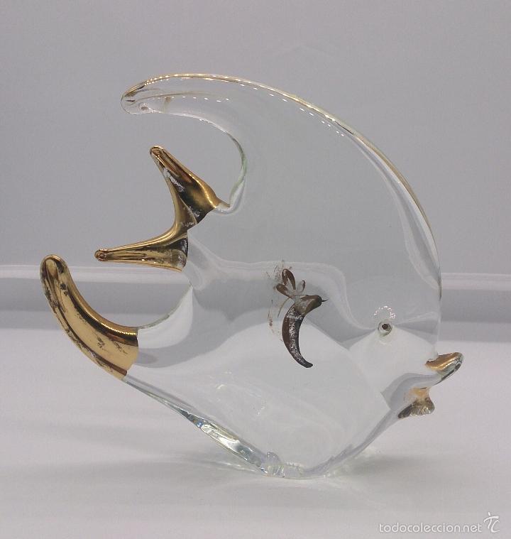 Antigüedades: Gran pez angel antiguo en cristal de murano Italiano autentico con baño parcial en oro de 18 k . - Foto 7 - 58339393