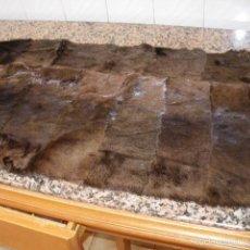 Antigüedades: ALFOMBRA DE PIEL DE FOCA NORUEGA NUEVA. Lote 58594692