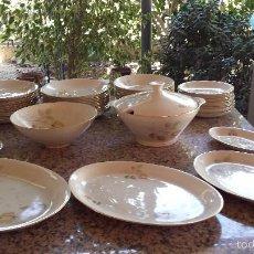 Antigüedades: ANTIGUA VAJILLA PORZELANIT, PRECIOSA. Lote 58634370