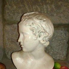 Antigüedades: BUSTO EN TERRACOTA. S.XIX. Lote 58790061