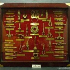 Antigüedades: CUADRO EXHIBIDOR CON DIFERENTES TIPOS DE NUDOS Y 2 ANCLAS 45 X 55 CM CON CRISTAL PROTECTOR CD121*. Lote 59477084