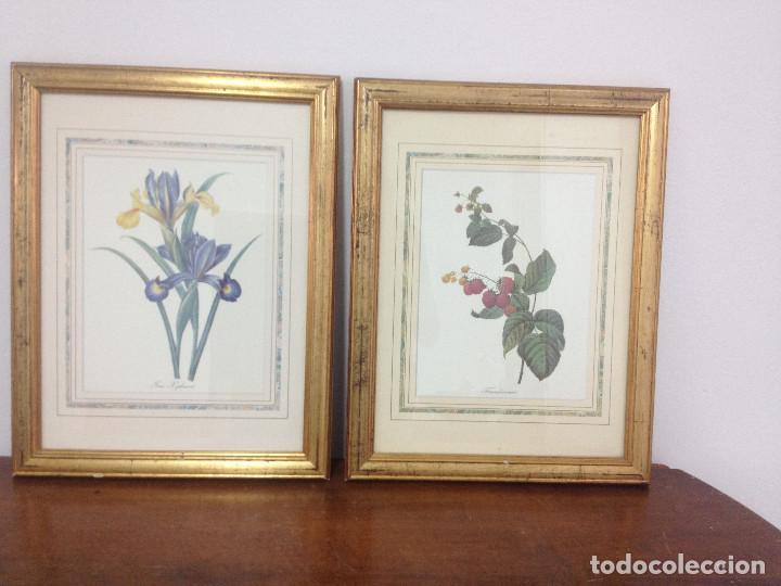 cuadros marco dorado con láminas de flores - Comprar en ...