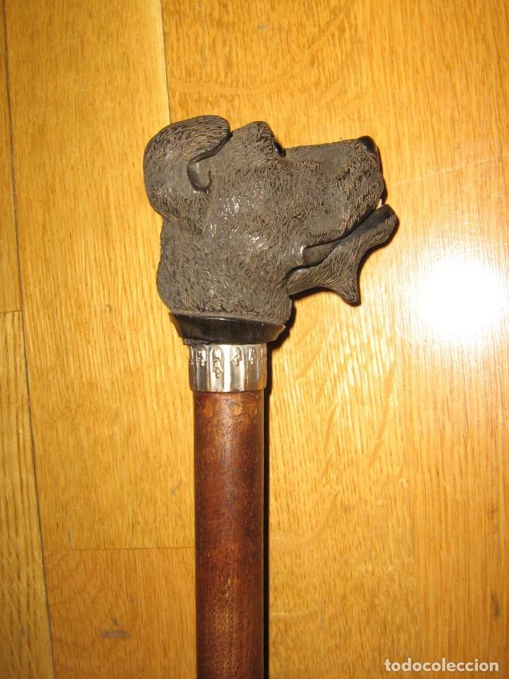 Antigüedades: BASTON DOBLE USO - Foto 2 - 64738259