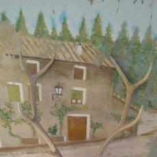 Antigüedades: CIERVO TROFEO 9 PUNTAS, NATURAL, PROCEDE DE MONTERIA. Lote 66763834