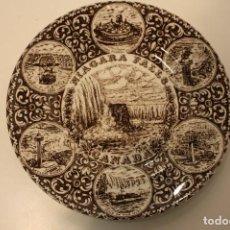 Antigüedades: PLATO WOOD & SONS CATARATAS NIAGARA CANADA - BUEN ESTADO. Lote 67526225