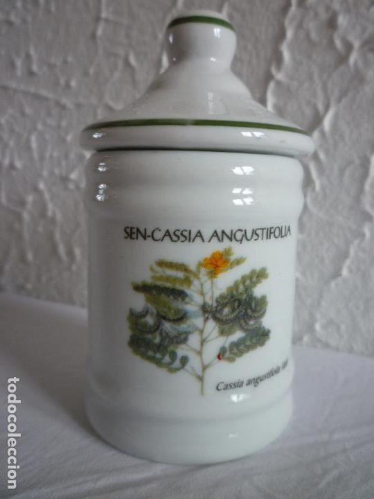 ALBARELO TARRO DE FARMACIA. SEN-CASSIA ANGUSTIFOLIA (Antigüedades - Porcelanas y Cerámicas - Otras)