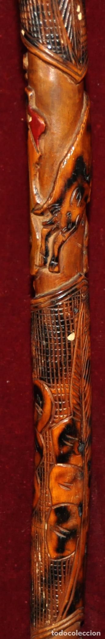 Antigüedades: ANTIGUO BASTON EN MADERA TROPICAL Y DECORACIONES TALLADAS A MANO. CIRCA 1900 - Foto 3 - 71174053