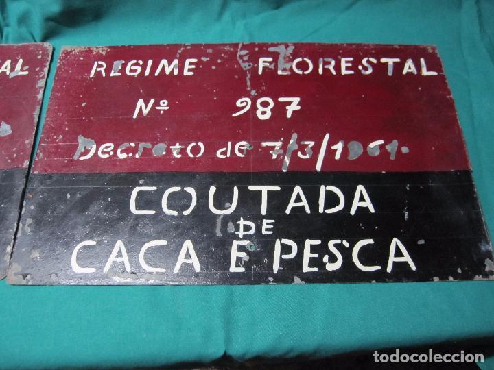 Antigüedades: ANTIGUA CHAPA PLACA PORTUGUESA COTO CAZA REGIME FORESTAL Nº 987 COUTADA DE CACA E PESCA - Foto 2 - 72416451