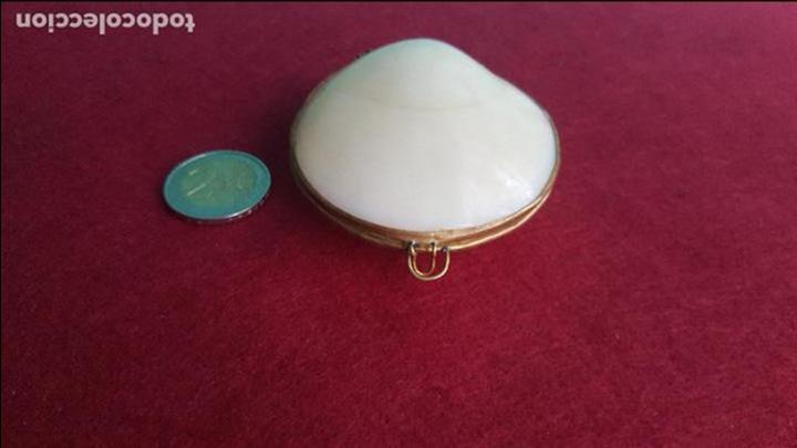 Antigüedades: Monedero en concha y metal - Foto 2 - 76755683