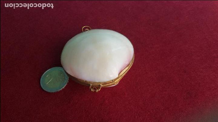 Antigüedades: Monedero en concha y metal - Foto 4 - 76755683
