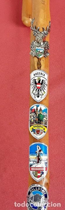 Antigüedades: CONJUNTO DE 3 BASTONES. MADERA DE BOJ(?) AUSTRIA. CIRCA 1970. - Foto 8 - 77224681