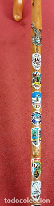 Antigüedades: CONJUNTO DE 3 BASTONES. MADERA DE BOJ(?) AUSTRIA. CIRCA 1970. - Foto 12 - 77224681