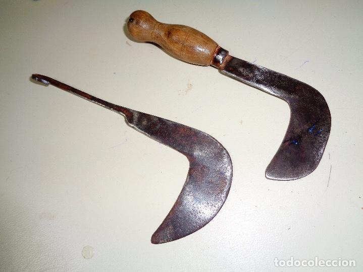 CORTANTES PARA PODAR SIGLO XIX (Antigüedades - Técnicas - Rústicas - Agricultura)