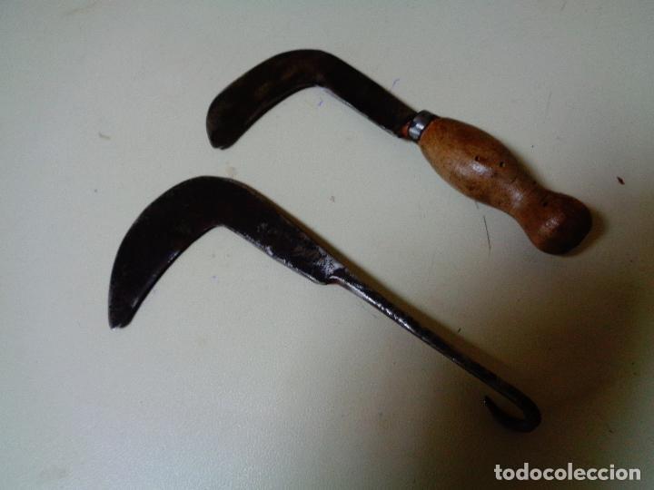 Antigüedades: cortantes para podar siglo XIX - Foto 2 - 77817237