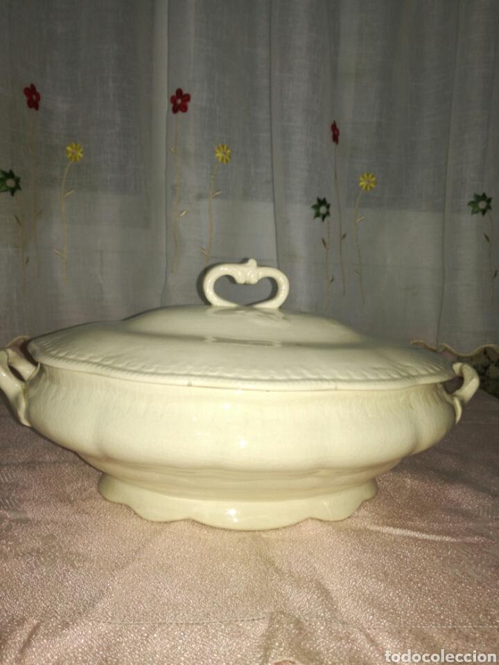 SOPERA DE LOZA CHINA OPACA (Antigüedades - Porcelanas y Cerámicas - San Juan de Aznalfarache)