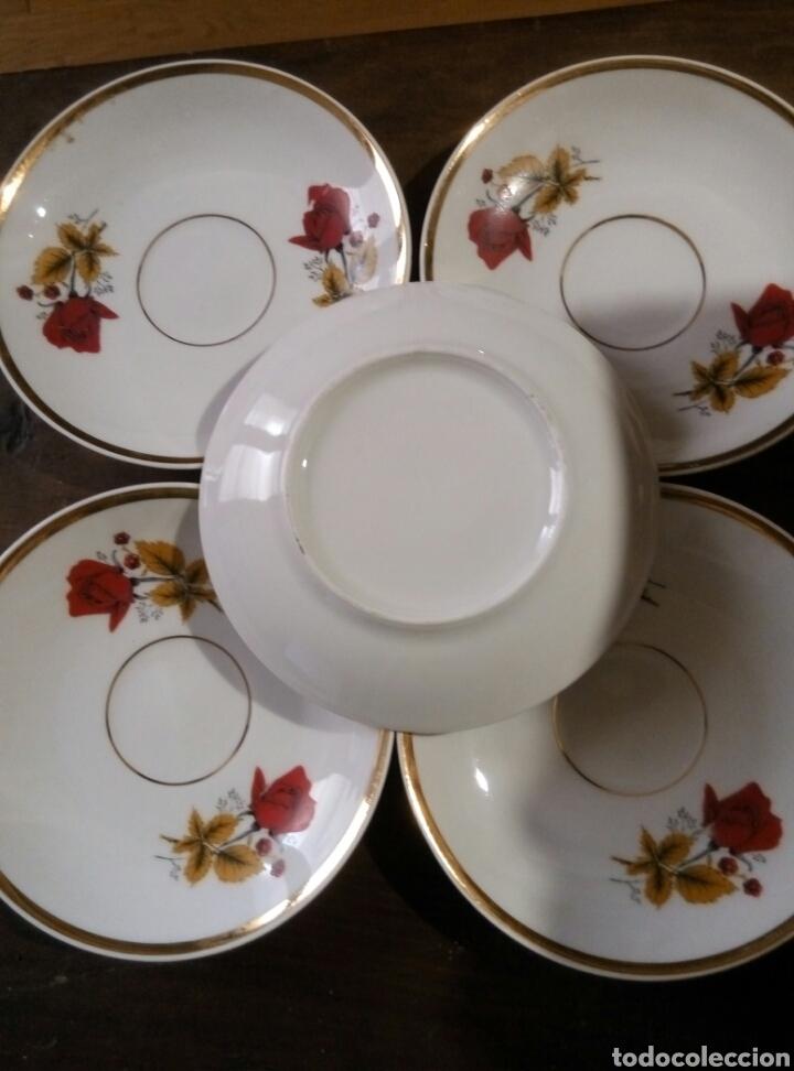 Antigüedades: Lote 5 platos cafe porcelana - Foto 3 - 78388387