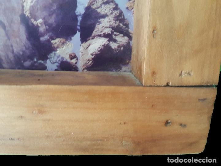 Antigüedades: Ventana antigua restaurada, Cabo de Gata - Foto 2 - 79614881