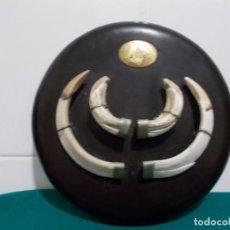 Antigüedades: MESTOMA CON DIENTES DE JAVALI AÑO 2000. Lote 82990456