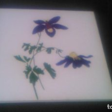 Antigüedades: ANTIGUO AZULEJO DECORATIVO PINTADO A MANO,.LAUREN SUISSE. Lote 84757124