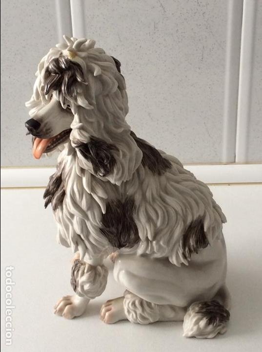 Antigüedades: Perro porcelana Algora - Foto 2 - 84994816