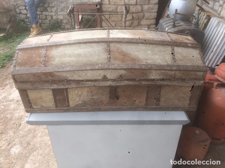 Antiguo ba l de madera y piel natural del siglo comprar ba les antiguos en todocoleccion - Herrajes muebles antiguos ...