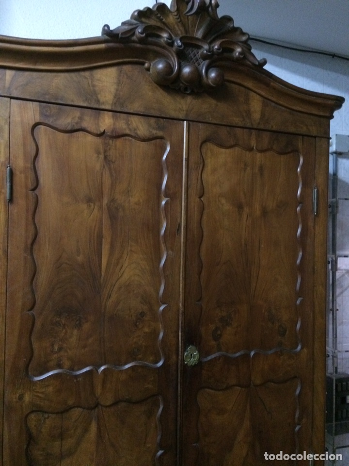 Antigüedades: Antiguo armario de raíz de nogal - Foto 4 - 86106735